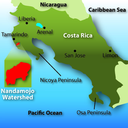 In The 1950s And 60s Us Demand For Cheap Hamburger Provided An Irresistible Economic Opportunity For The Region Much Of The Land In Guanacaste Was Cleared